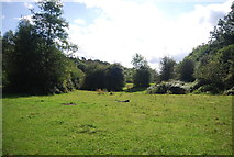 SE3258 : Open space, Nidd Gorge by N Chadwick