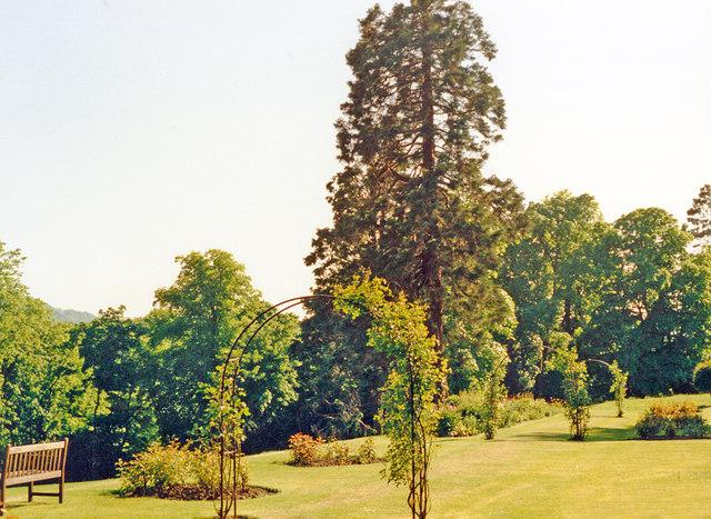 South-west in garden of Kingsknowe Hotel near Galashiels, 1988
