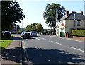 TF6830 : Hunstanton Road in Dersingham by Mat Fascione