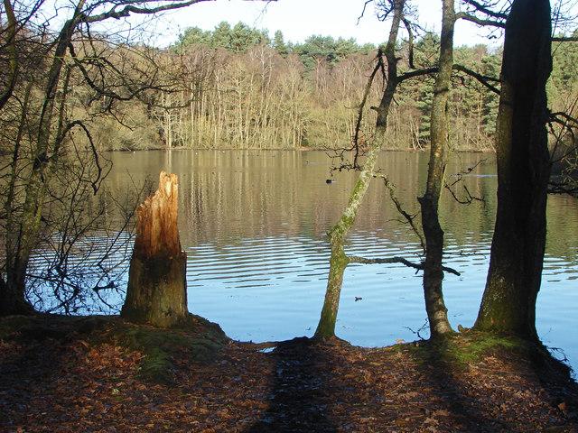 Heath Lake, Wokingham