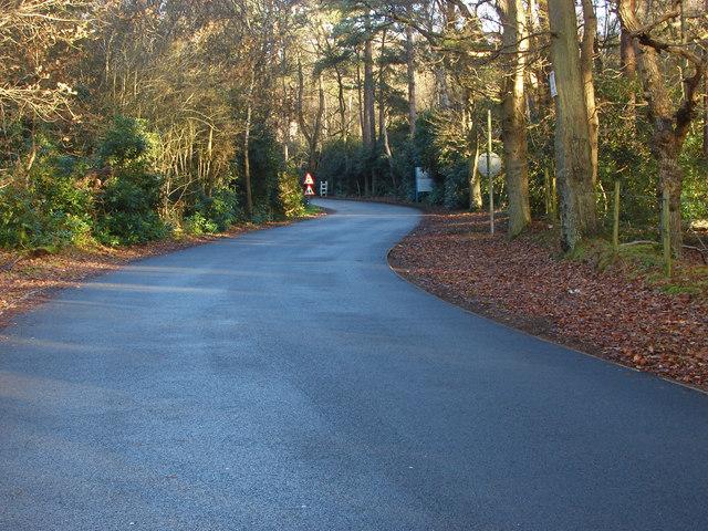 Road to Ravenswood Village
