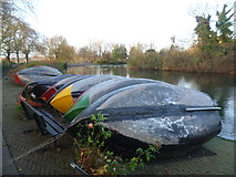 TQ3187 : Hibernating boats in Finsbury Park by Marathon