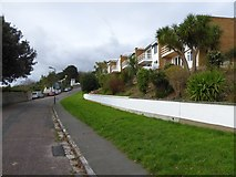 SX9263 : Modern housing, Lincombe Drive, Torquay by David Smith