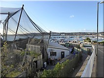 SX9163 : Living Coasts and Torquay harbour by David Smith