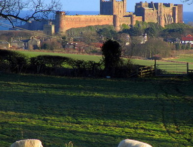 NU1835 : Bamburgh Castle from the west by Andrew Curtis