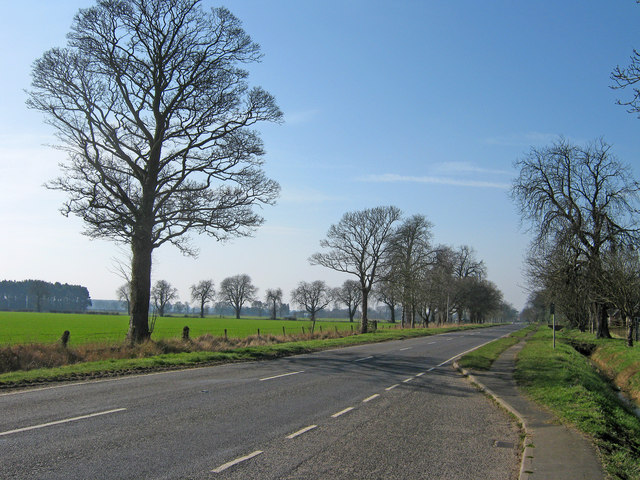 Farmland east of Revesby