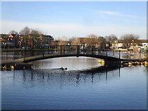 SE5613 : Bridge over the Mere by Jonathan Thacker