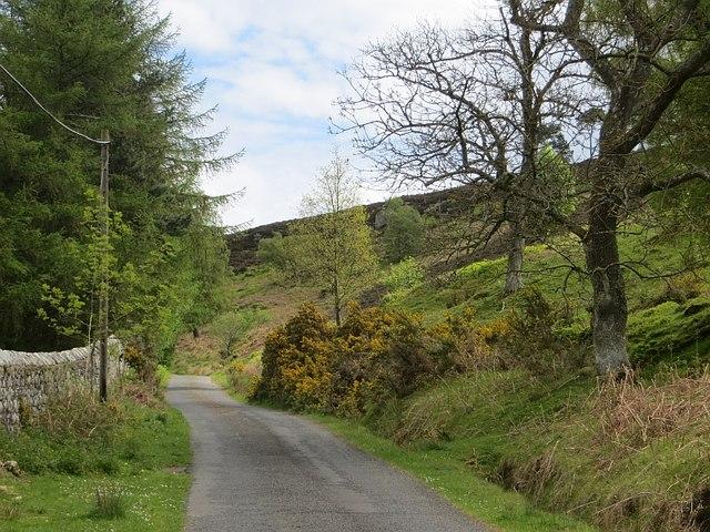 Road, Hepburn Moor