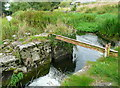S4943 : Mill leat overflow, Hutchinson's Mill, Kells by Humphrey Bolton