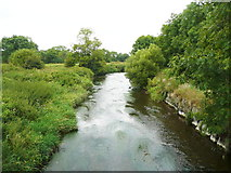 S4943 : King's River from the footbridge near Kells Priory by Humphrey Bolton