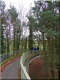 SX9798 : Slope to a footbridge over the M5 near Killerton by David Smith