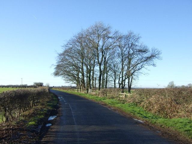 Minor road towards Skerne