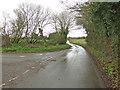 TG0410 : Thynne's Lane near Almabrook Farm by Adrian S Pye