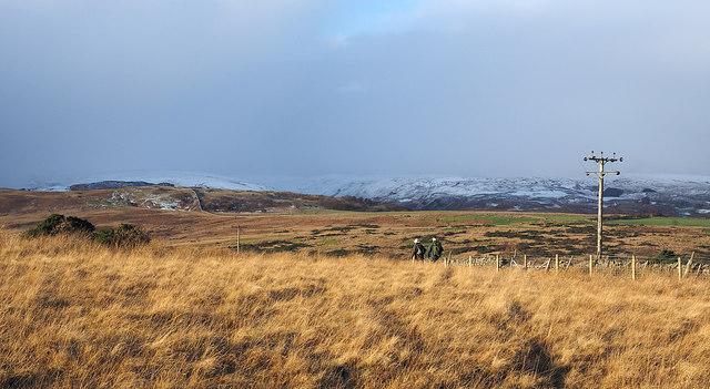 Rough grassland near to Rayside