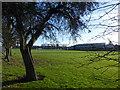 SE7324 : Goole High School Academy playing fields by Graham Hogg