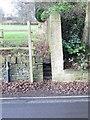 SE0619 : Footpath - Branch Road by Betty Longbottom
