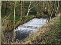 SE0619 : Weir - Black Brook by Betty Longbottom