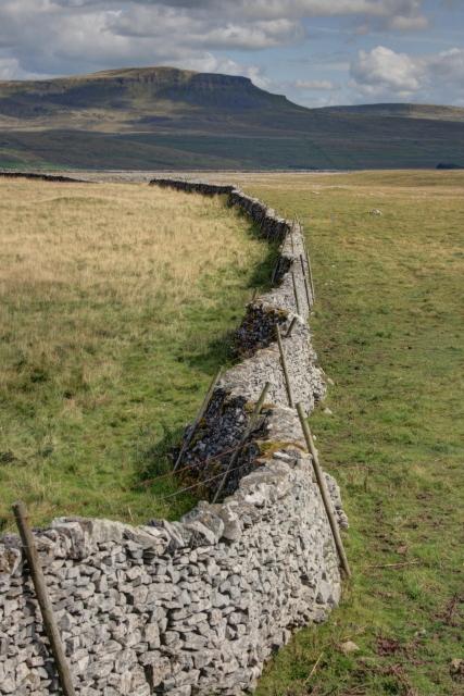 Dry Stone Wall, Combs Edge