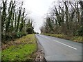 SE5118 : New Road, alongside Castle Hill Wood by Christine Johnstone