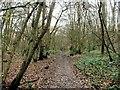 TQ7662 : Cossington Road, Walderslade by Chris Whippet