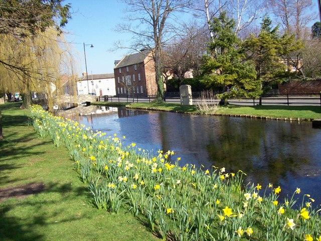 Springtime along the Bourne Eau at Bourne, Lincolnshire