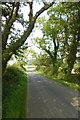NU2213 : Minor road from the A1068 by DS Pugh
