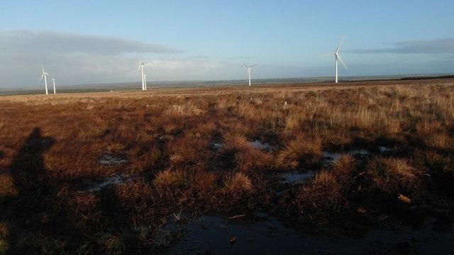 Felled forest  with Wathegar wind turbines in distance