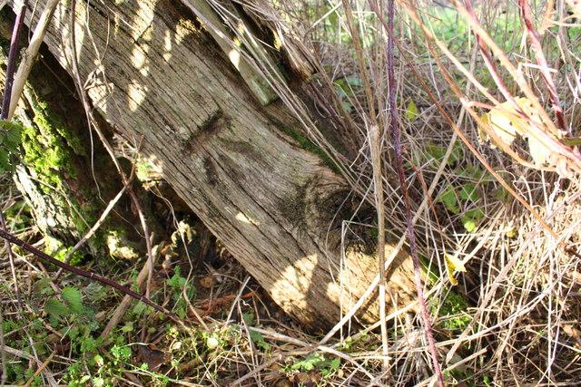 Benchmark on wooden gatepost