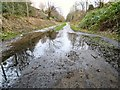 SJ9594 : Puddle on the Trans Pennine Trail by Gerald England