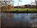 SP2965 : Floodmeadow behind Ashley Crescent, Myton, Warwick 2014, December 19 by Robin Stott