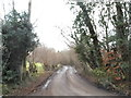 TQ0851 : Shere Road, Sheepleas by David Howard