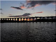 NT9953 : Berwick upon Tweed - Royal Border Bridge at dusk by Colin Park