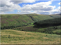NT9623 : On the path down to Harthope Valley - View towards Langlee Crags, Cheviots by Colin Park