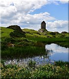 NT6334 : Smailholm Tower by Michael Garlick