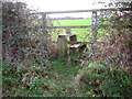 TM1598 : Stile on footpath off Ashwellthorpe Road by Evelyn Simak