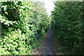 TR3053 : Cycle path alongside A256 Dover Road by Hugh Craddock