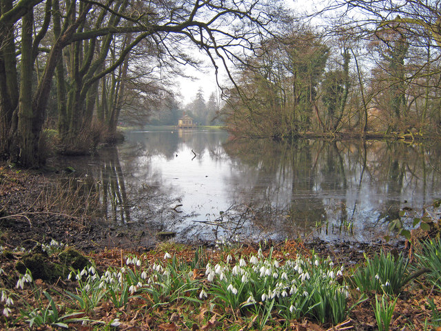 Snowdrops at the Boathouse Pond