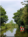 SJ9381 : Macclesfield Canal south of Wood Lanes, Cheshire by Roger  Kidd
