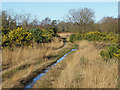 SU8358 : Waterlogged track, Yateley Common by Alan Hunt