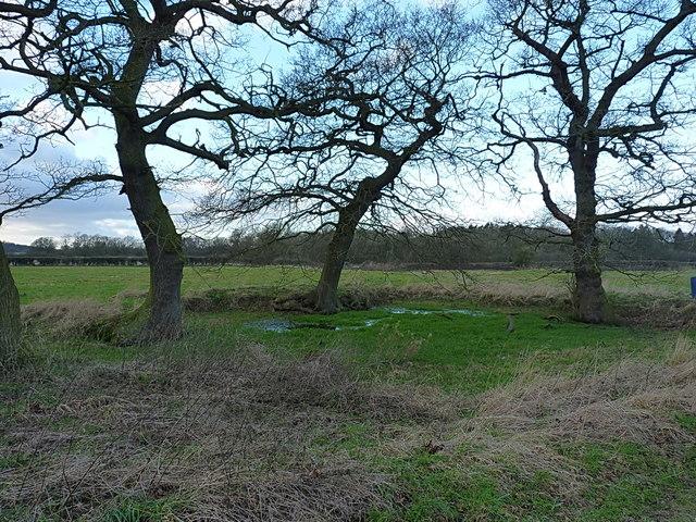 The old duckpond at Pollymoor Farm