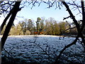 H4772 : Frosty, Camowen, Omagh by Kenneth  Allen