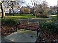 SK5804 : Seat in Castle Gardens by Mat Fascione