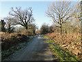 TG1035 : Frosty road by Edgefield pig farm by Adrian S Pye