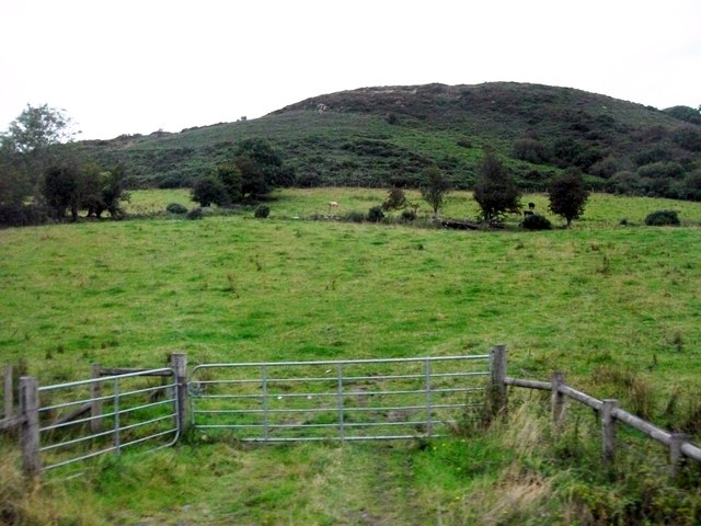 The whin covered slopes of Sturgan Mountain