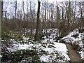 SE2704 : Stream swollen by melt water near Silkstone by Steve  Fareham
