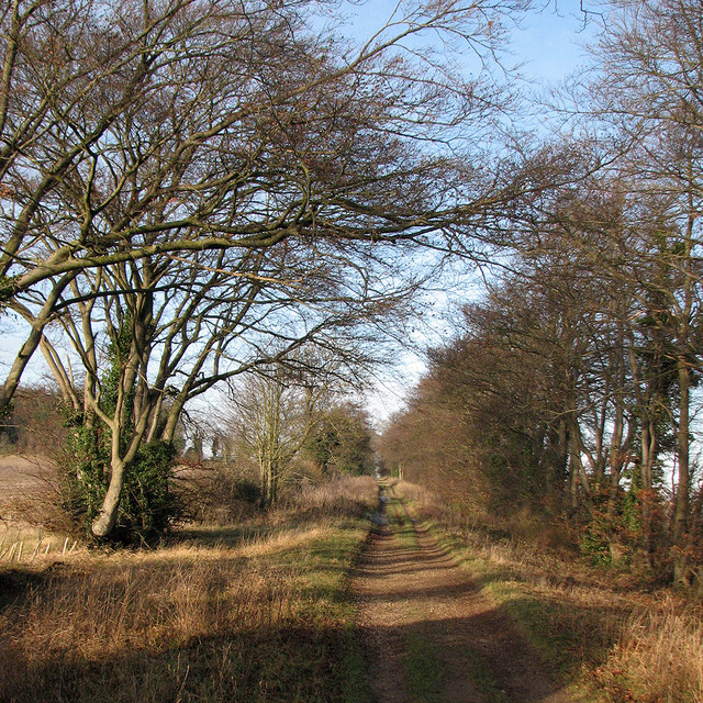 Towards Copley Hill on The Roman Road