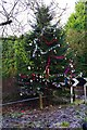 "SO8580 : ""Christmas Tree"", December 2014, Caunsall Road, Caunsall, Worcs by P L Chadwick"