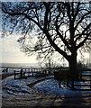 SK5657 : Lindhurst Farm, South of Mansfield, Notts. by David Hallam-Jones