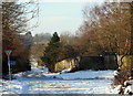SK5756 : Cave Wood Vicinity, Blidworth, Notts. by David Hallam-Jones