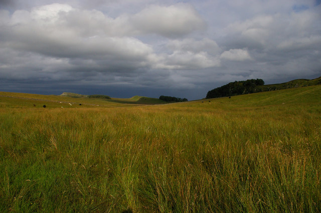 Valley north of Housesteads Crags, from the Pennine Way